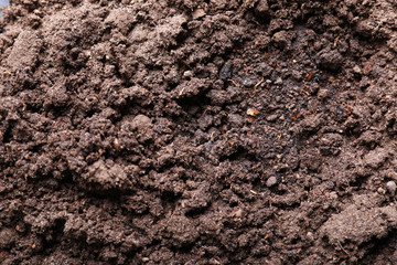 Brown soil texture as background