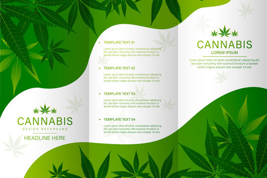 Cannabis or marijauna medical bottle oil Brochure desing. vector illustration.
