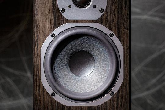 Two-Way Hi-Fi speaker close-up