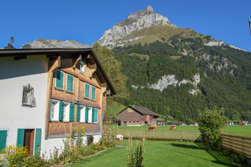 Rural landscape with traditional chalet at Engelberg in the Swiss alps