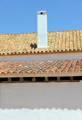 Typical Andalusian cortijo (farmhouse), traditional and popular architecture of whitewashed walls and roofs of Arab style tiles. Seville Andalucia Spain