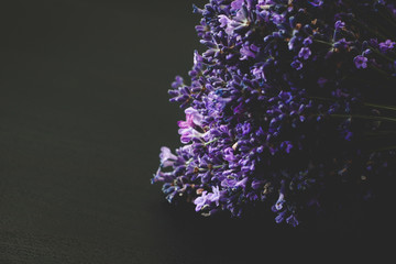 Wall Murals Lilac A beautiful lavender on a black wooden background. Dark lilac and blue flowers of lavender.
