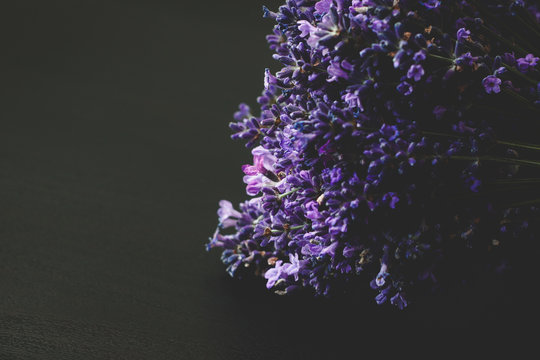 A beautiful lavender on a black wooden background. Dark lilac and blue flowers of lavender.