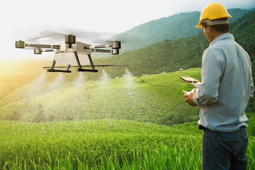 Agriculturist drone fly to spray fertilizer on the rice fields. Agricultural technology concept. - Image Wall mural