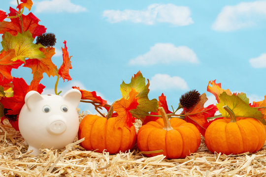 Fall savings with piggy bank and pumpkins and fall leaves on straw hay with sky