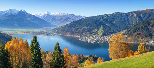 Foto auf Leinwand Herbst Panoramic view of beautiful autumn scene in the Alps with crystal clear Zeller lake, golden leaves and famous Kitzsteinhorn on a sunny day with blue sky in fall, Zell am See, Salzburger Land, Austria