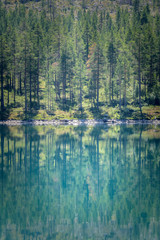 Pine forest perfectly reflected in green lake in sunny weather Norway