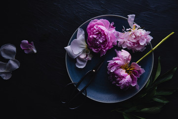 Overhead view of peony flowers and scissors on plate