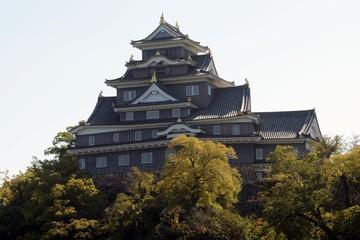 Medieval castle, Okayama, Japan