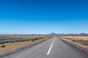 Droga asfaltowa, Islandia - fototapety na wymiar