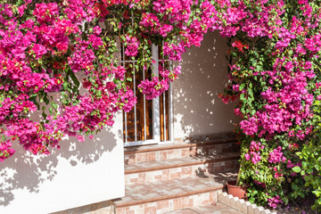 Entrance door decorated with bright flowers