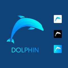 Colorful dolphin logo design concept.