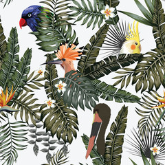 Stores à enrouleur Botanique Exotic bird in tropical jungle white background