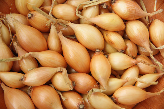 the background of the food. Solid food background consists of bulbs and oblong yellow onions.