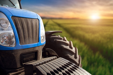 Wall Mural - Modern tractor on a field with green wheat at sunset.
