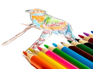 handgemalter Papagei mit Buntstiften