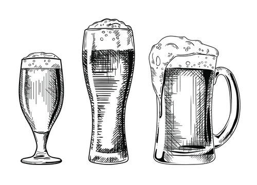 Set of the different beer glasses vector illustration, hand drawn sketch style
