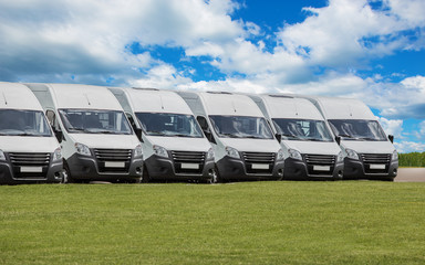 Wall Mural - Minibuses For Sale Stock Lot Row.