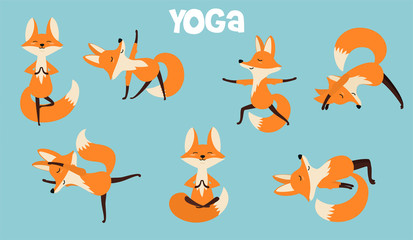 Set of stylish cartoon foxes in various poses of yoga. Vector illustrations isolated on white background.