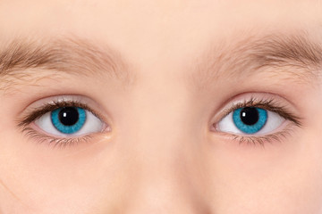 Blue eyes of beautiful young child girl macro photo.