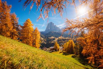 壁紙(ウォールミューラル) - Splendid autumn landscape in Val Gardena. Location Dolomites, Trentino Alto Adige, Italy, Europe.