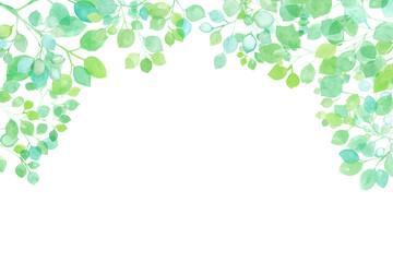 新緑の木漏れ日のフレーム 水彩イラスト