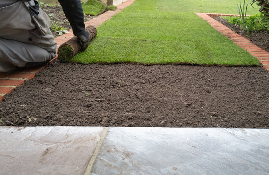 New grass turf being installed in a garden along new brick edging.