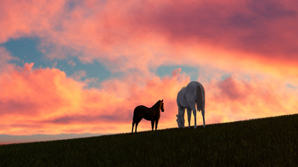 Türaufkleber Koralle Horse Outdoor at Sunset 3D Rendering