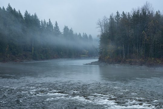 Beautiful scenery of a river surrounded by green trees enveloped in fog