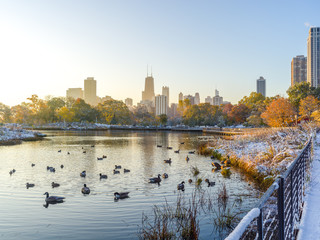 Fototapete - Chicago Lincoln Park fall foliage in snow