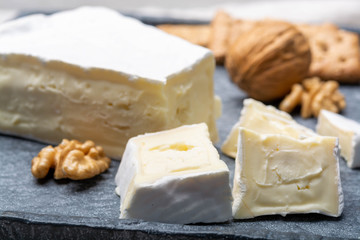 Cheese collection, piece of French brie cheese with white mold