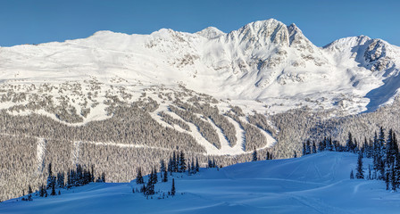 Seventh Heaven  on Blackcomb Mountain view from Whistler in Winter