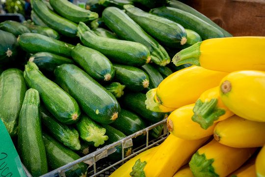 Zucchini and yellow squash for sale at a local farmer's market in Southern Oregon