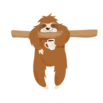 Cute sloth bear on tree brunch holding cup of coffee scandinavian illustration isolated on white background. Little Sloth hang on twig and drink coffee kawaii childish vector hand drawn illustration.