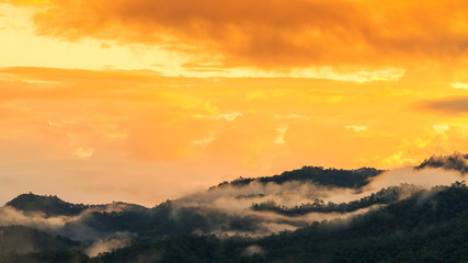 Foto op Canvas Meloen Landscape of misty over forest on the mountains slope in a nature morning time