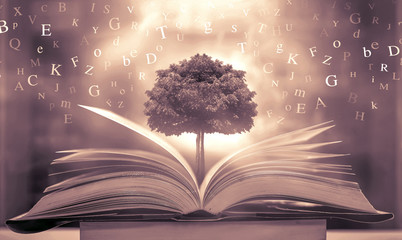 Imagine opening an old book blurred with magic power on the table and the English alphabet floating above the book with magic light as a beautiful background design. Wall mural
