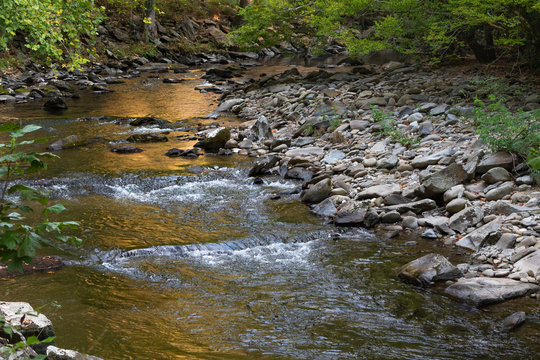 A river flowing in the Great Smoky Mountains National Park in late afternoon with a golden glow of the sun on the river