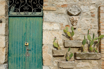 old wooden door and cactuses