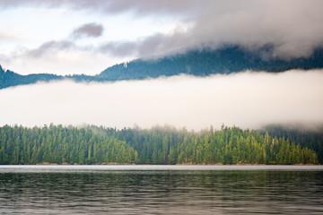 Clayoquot Sound wilderness landscape, Tofino, British Columbia, Canada