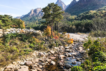 mountain river in Seoraksan National Park
