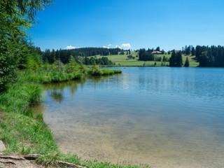 Lakescape Pond Koegel in Bavaria