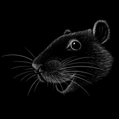 The Vector logo mouse or rat for tattoo or T-shirt design or outwear.  Cute print style mouse or rat background. This drawing Chinese New Year mouse would be nice to make on the black fabric or canvas