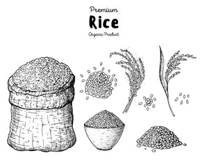 Rice hand drawn vector illustration. Bag of rice sketch. Packaging design. Rice plant.
