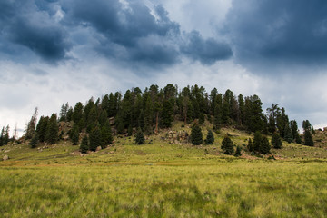 Storm clouds above a forested peak and grassy plains in the Valles Caldera National Preserve