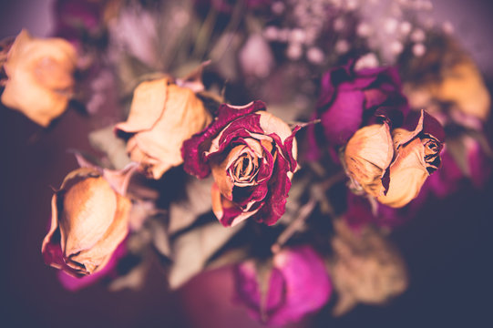 A bouquet of wilted, dry roses in a vase