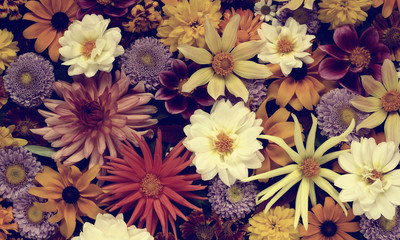 Foto auf Leinwand Blumen floral background, top view. toning.