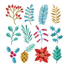 Winter christmas plants illustrations set. Poinsettia, spruce, pine, cedar, mistletoe. Plant branches, flora, foliage.