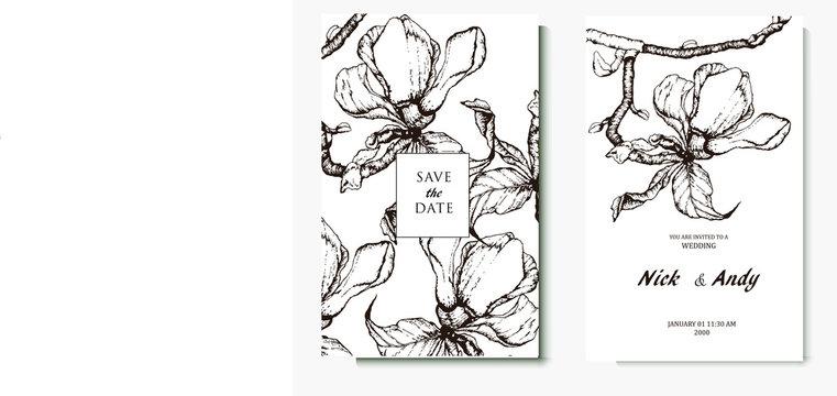 Herbal illustration on label packaging design. Hand drawn vector botanic set with branch, flowers. Wedding invitation