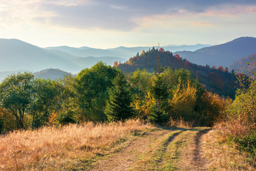 country road through forested hills in the evening. beautiful autumn nature scenery of carpathians. colorful foliage on trees. borzhava ridge in the distance beneath a blue sky with fluffy clouds