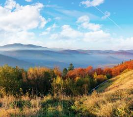 wonderful autumn morning in mountains. misty atmosphere with clouds on the sky. trees on the hillside in fall foliage. weathered grass on the slopes. fog rising from the distant valley